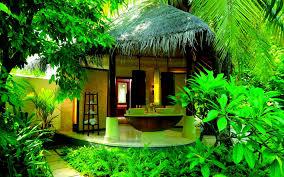 sweet home green house hd hd wallpapers rocks