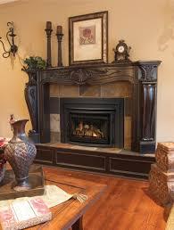 archguard optima 40 34 u0026 22 gas fireplace inserts washington