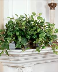 artificial plants realisitc silk pothos planter at officescapesdirect