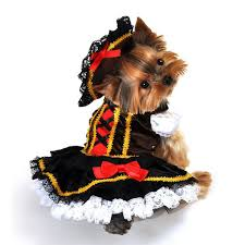 Pirate Halloween Costumes Girls Swashbuckler Pirate Halloween Dog Costume Baxterboo