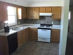 kitchen design home awe inspiring 20 professional designs 1