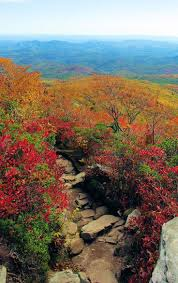 13 best montgomery county nc images on pinterest fields north