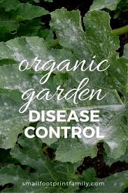 Methods Of Controlling Plant Diseases - organic garden disease control favorite recipes homemade and plants
