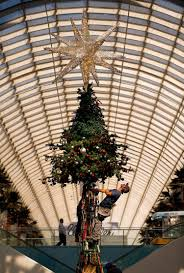 thanksgiving building dallas time lapse watch the 95 foot galleria dallas christmas tree come
