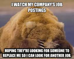 Sad Bear Meme - i watch my company s job postings hoping they re looking for someone