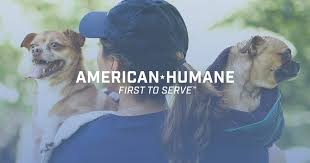 get involved american humane