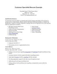 Example Of A Summary In A Resume by Summary Of Qualifications Resume Examples Resume For Your Job