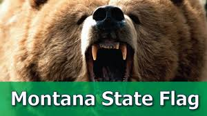State Flag Meanings What Is The Meaning Of Montana State Flag Youtube