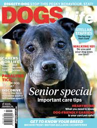 dogs life 2016 by minhvinhomes issuu