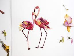 pressed flowers flamingo print pressed flower flower arrangement