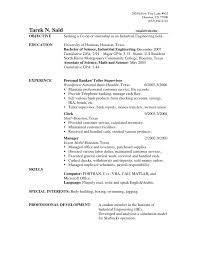 Create Your Resume Online by Resume How To Put My Resume Online Professional Cv Makers Sample