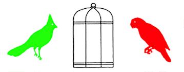 uccelli in gabbia uccelli in gabbia
