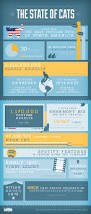 the state of cats infographic cats for the furry kids