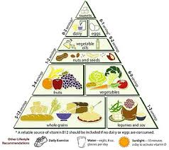 diet in hinduism wikipedia