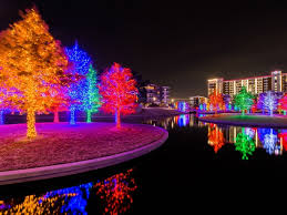 martha stewart christmas lights shooting star these are the 9 best things to do in dallas this thanksgiving