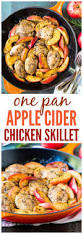 best 25 apple chicken ideas on pinterest apple recipes dinner