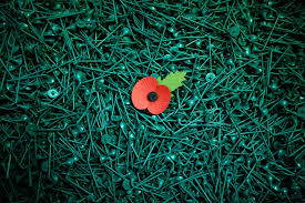 how to wear a poppy which side to wear your remembrance day poppy