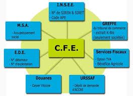 Cfe Centre De Formalités Des Entreprises Chambre D Accéder Au Centre De Formalité Des Entreprises Cfe Agriculture