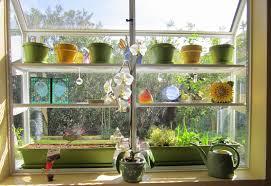 kitchen garden window ideas com trends including greenhouse