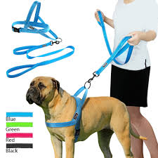 online buy wholesale dog harness from china dog harness