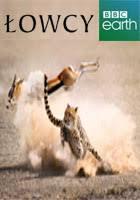 Seeking Zalukaj łowcy Zabawa W Chowanego The Hunt Hide And Seek 2015