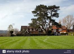 large tree stands between two houses in the country stock photo