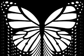best of monarch butterfly coloring pages coloring pages activities