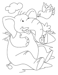 elephant bird coloring download free elephant