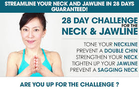 Challenge Up Your Nose Reshape Your Nose Ebook Method