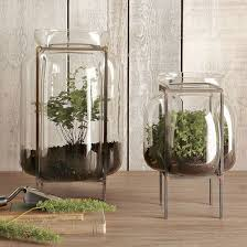 how to create a whimsical terrarium style at home