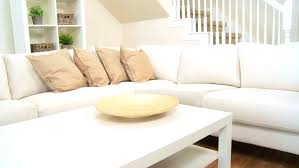 Decorating New Home Home Real Estate And Furniture Concept Male Decorating New Home
