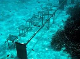 bureau avec tr eau le gouvernement des maldives a tenu une réunion du cabinet sous l