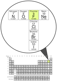 Bromine On The Periodic Table File Fluorine With Significant Periodic Table Neighbors Svg