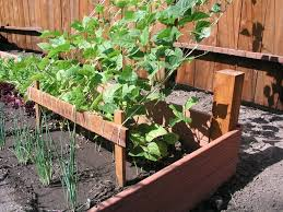 garden design raised garden bed ideas vegetables raised bed