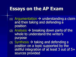 Ap Language And Composition Grading Rubric Synthesis Essay   Essay