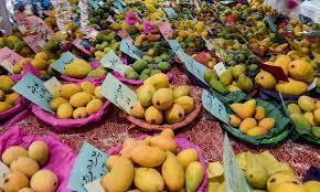 king of fruits sindh u0027s best kept secret iris herald