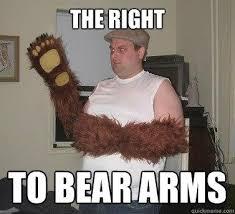 2nd Amendment Meme - the right to bear arms 2nd amendment quickmeme