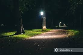 dark sky compliant post lights dark l post click to enlarge dark sky compliant l post