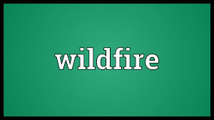 Definition For Wildfire by Wildfire Meaning Youtube