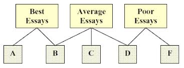 Answering The Essay Short Answer Exam Question Quality Writing by Strengths And Dangers Of Essay Questions For Exams Duquesne