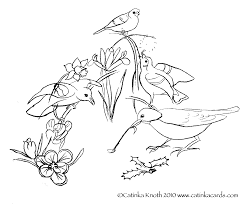 birds and flowers coloring pages coloring home