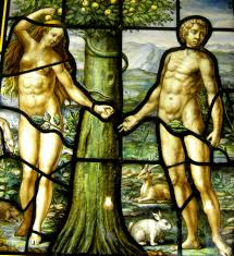 adam and eve seed gathering ministry science sites and