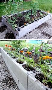 Raised Vegetable Garden Ideas Diy Vegetable Garden Ideas House Decor Ideas Garden Idea Diy