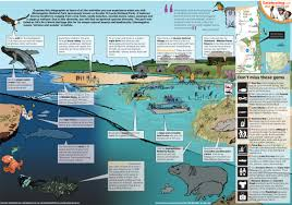St Lucia Map Explore Isimangaliso Wetland Park Graphics24