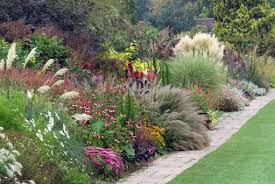 diarmuid gavin how ornamental grasses can bring to your garden