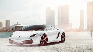 lamborghini ultra hd wallpaper lamborghini gallardo white wallpaper hd car wallpapers