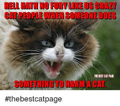 Crazy Cat Memes - 25 best memes about crazy cat crazy cat memes