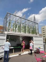 urban farming aquaponics an write up about backyard aquaponic