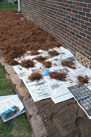 How To Cut Weeds In Backyard This Really Works No Weeds For Two Years The Home Deco
