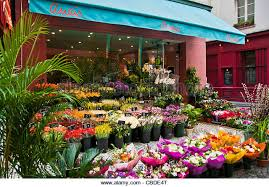 florist shop florist shop stock photos florist shop stock images